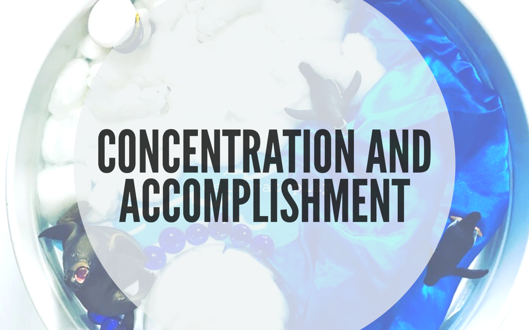 IDEAS TO STRENGTHEN CONCENTRATION and ENCOURAGE A SENSE OF ACCOMPLISHMENT