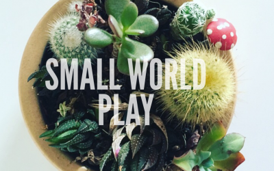 SMALL WORLD PLAY – WHERE DO I START?  A BEGINNERS GUIDE TO SMALL WORLD PLAY